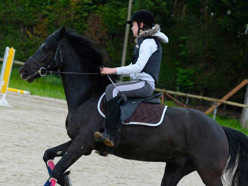 double-poney-dancer.jpg