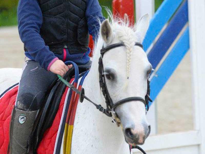 poney-etoile-01.jpg