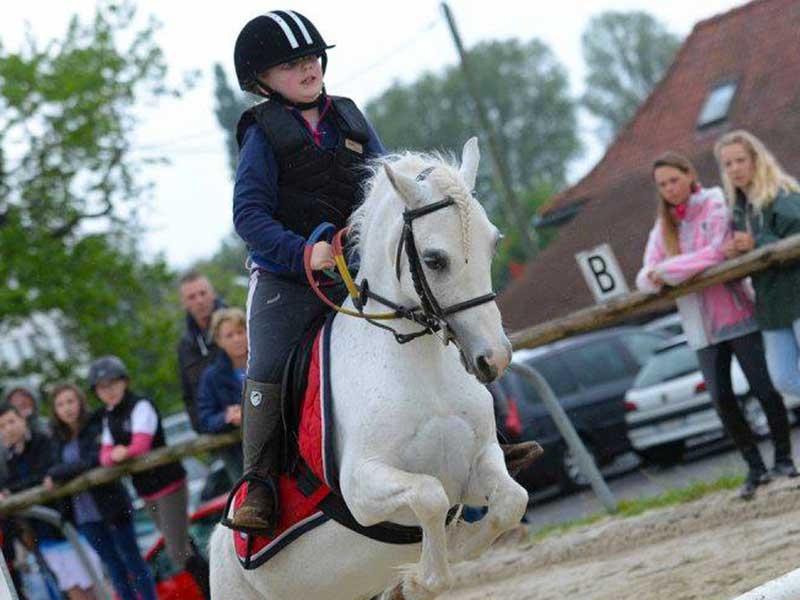 poney-etoile-02.jpg