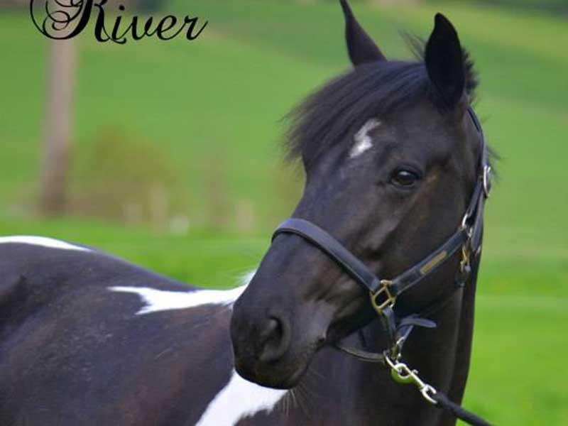 cheval-river-01.jpg